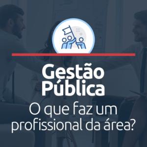 O que faz um profissional formado em Gestão Pública?